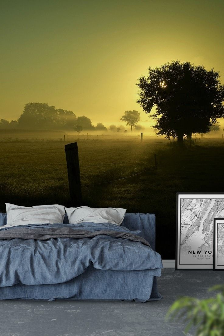 Trees in backlight Wall mural | Wall murals, Wallpaper and Walls
