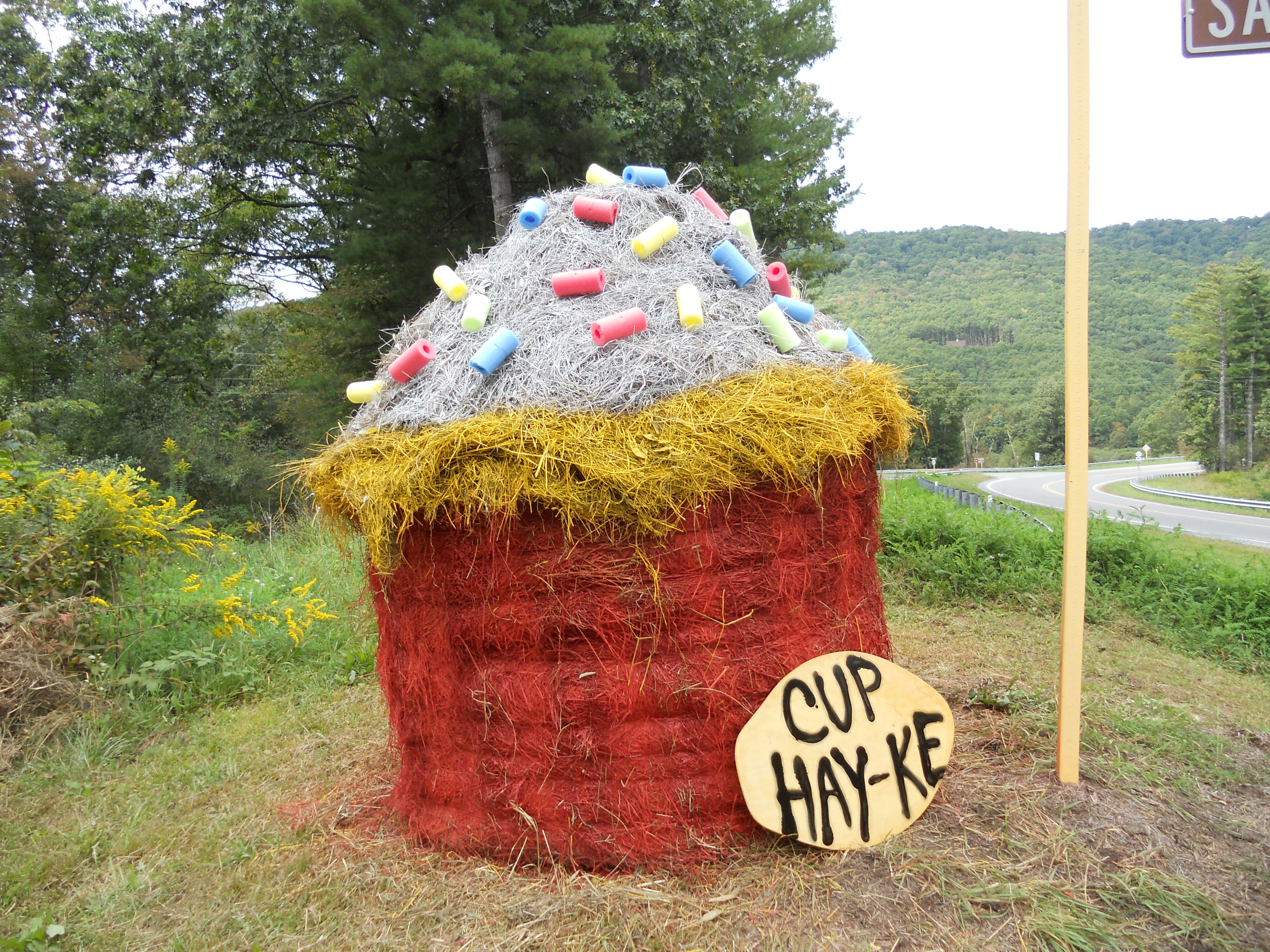 Hay bale decor cupcake hay hay hay pinterest for Bales of hay for decoration