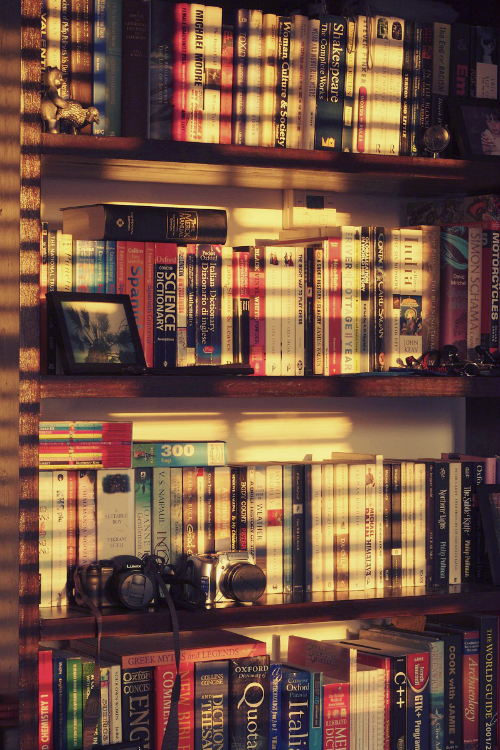 books and sunlight