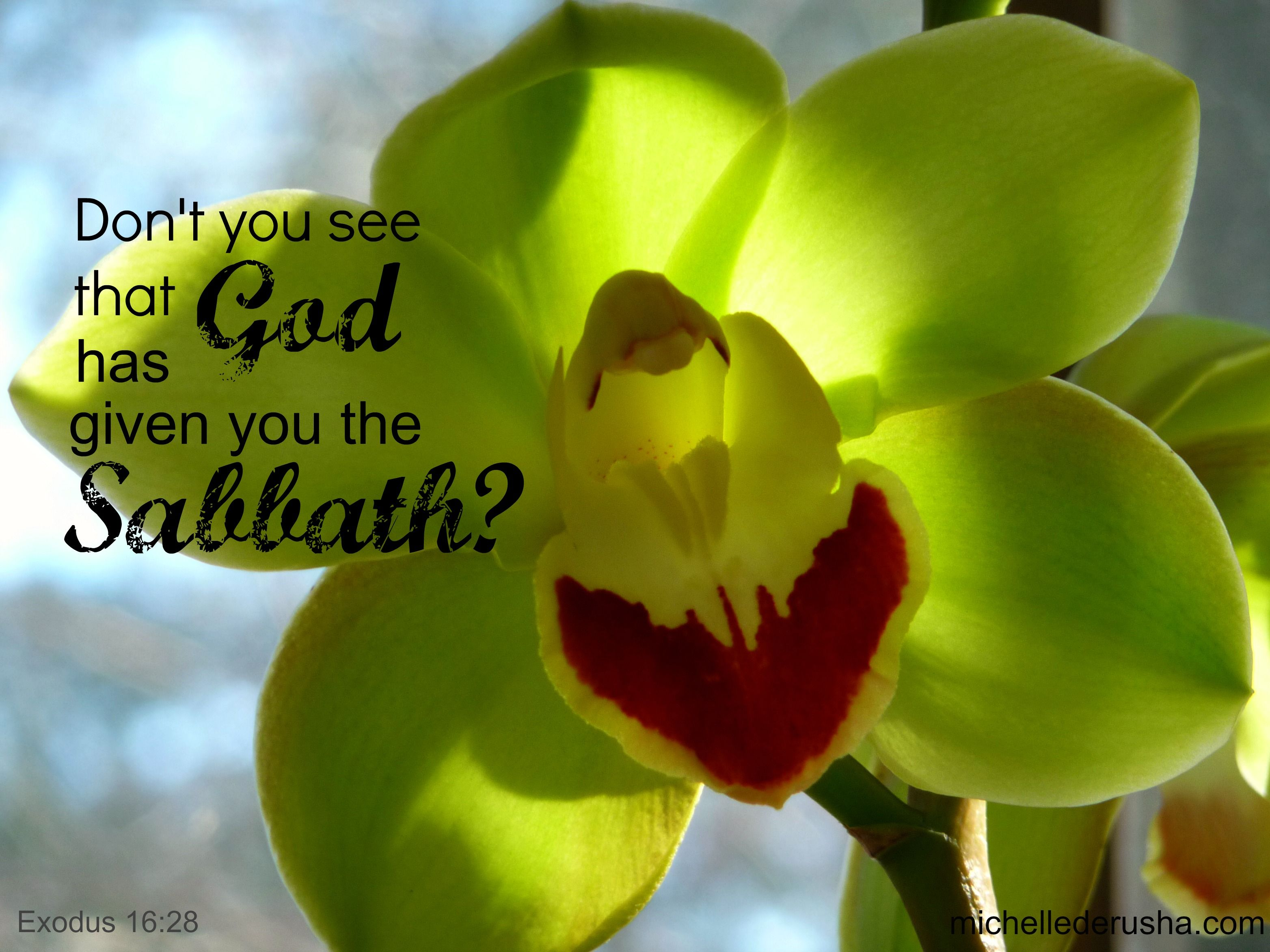 51 best sabbath greetings images on pinterest sabbath rest god gives us the sabbath kristyandbryce Image collections