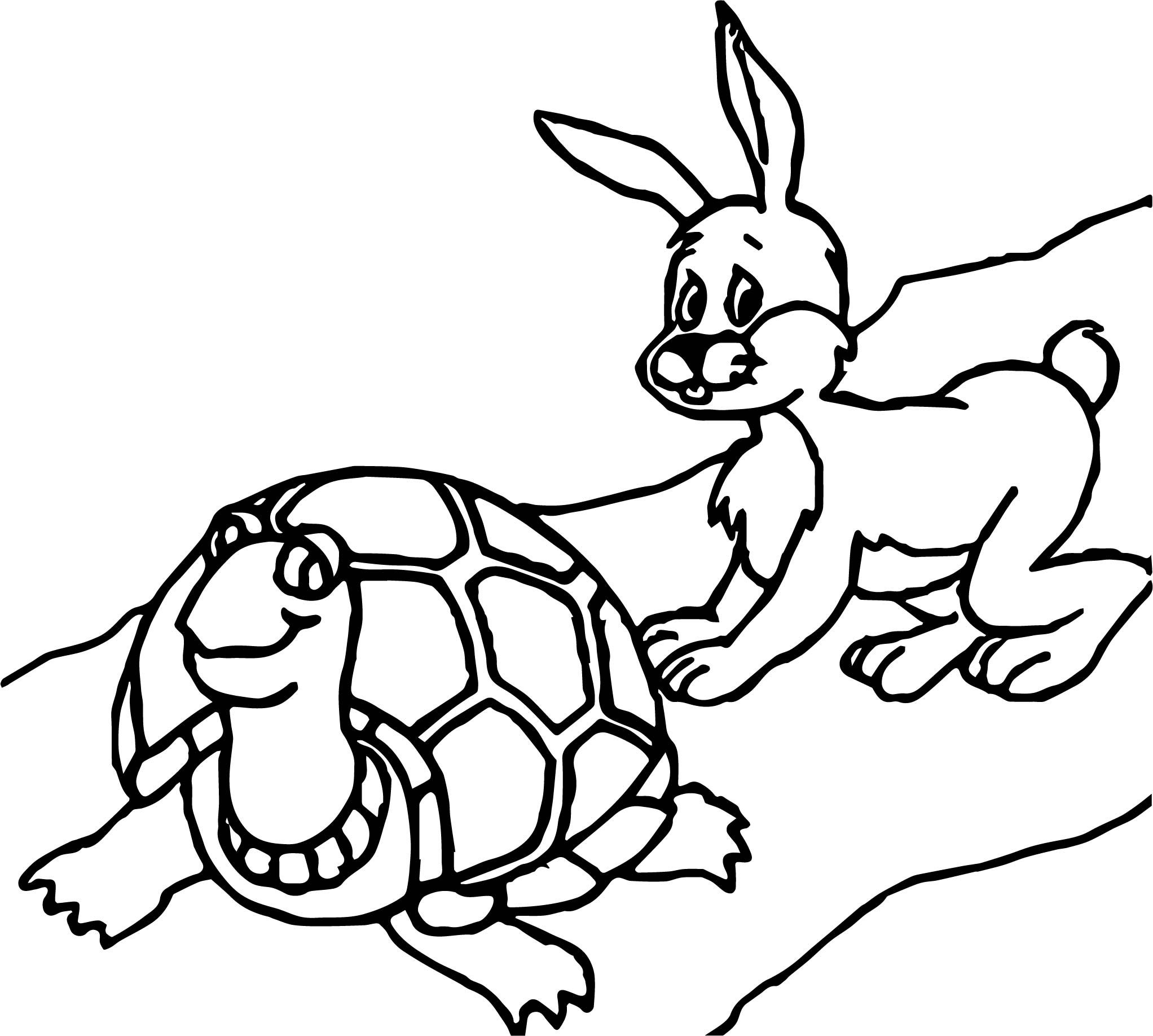 Awesome Tortoise Turtle Bunny Coloring Page Bunny Coloring Pages Turtle Coloring Pages Owl Coloring Pages