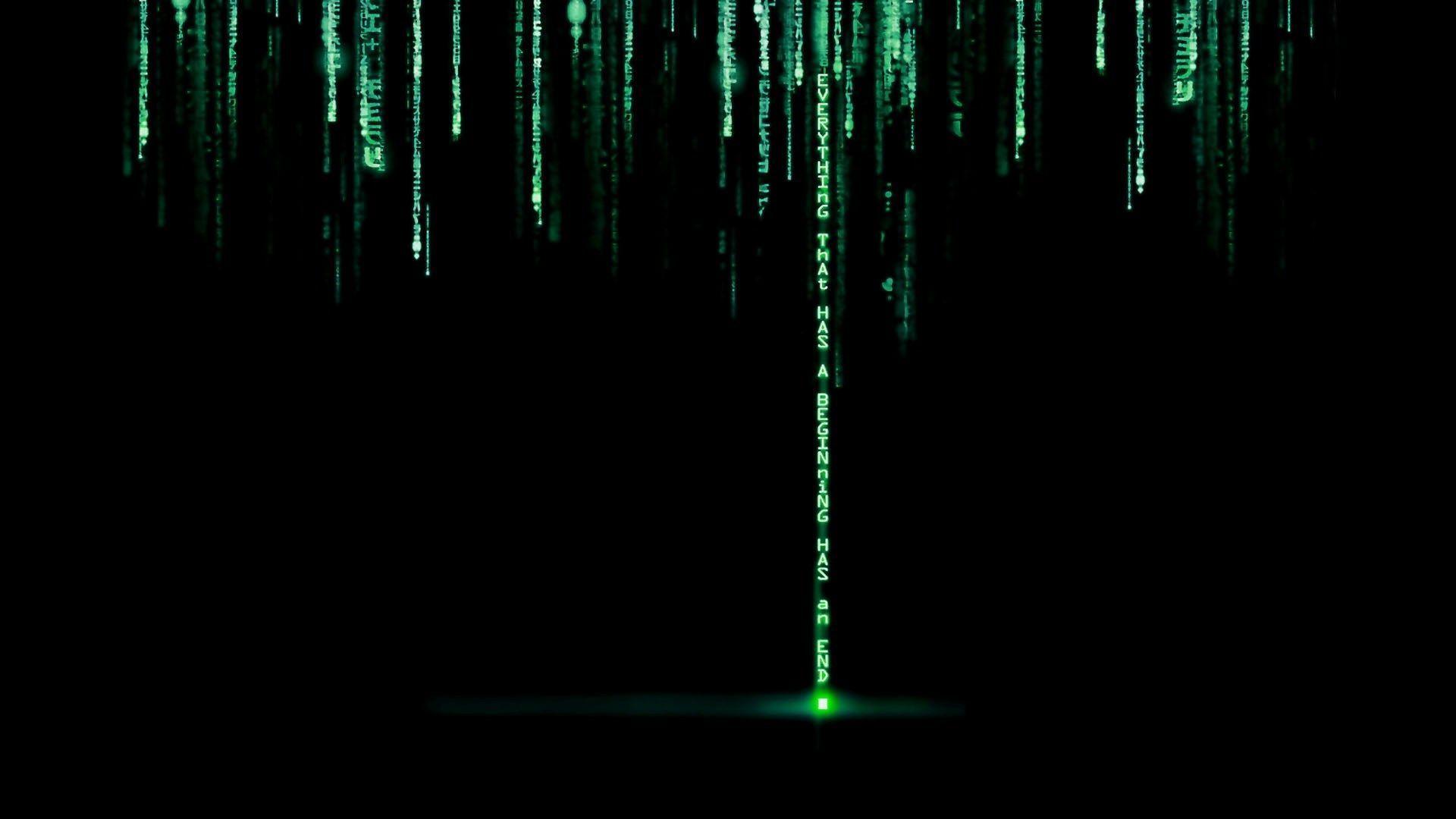 Matrix Free Background Wallpaper 4k 4k In 2020 Code Wallpaper Hd Wallpaper Wallpaper Windows 10