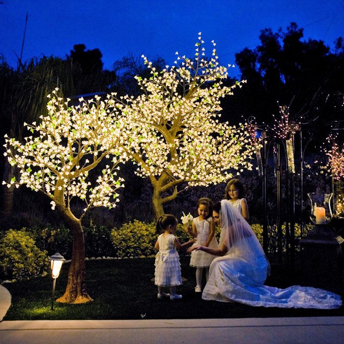 Illuminated Tree As A Feature Of Our Wedding Showcase And Night Themes Blueberryevents Blossom Trees Led Christmas Tree Indoor Wedding