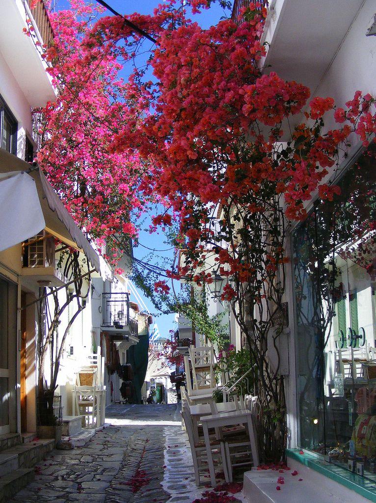 Skiathos, Greece  | by Hythe Eye | via santoriniblog