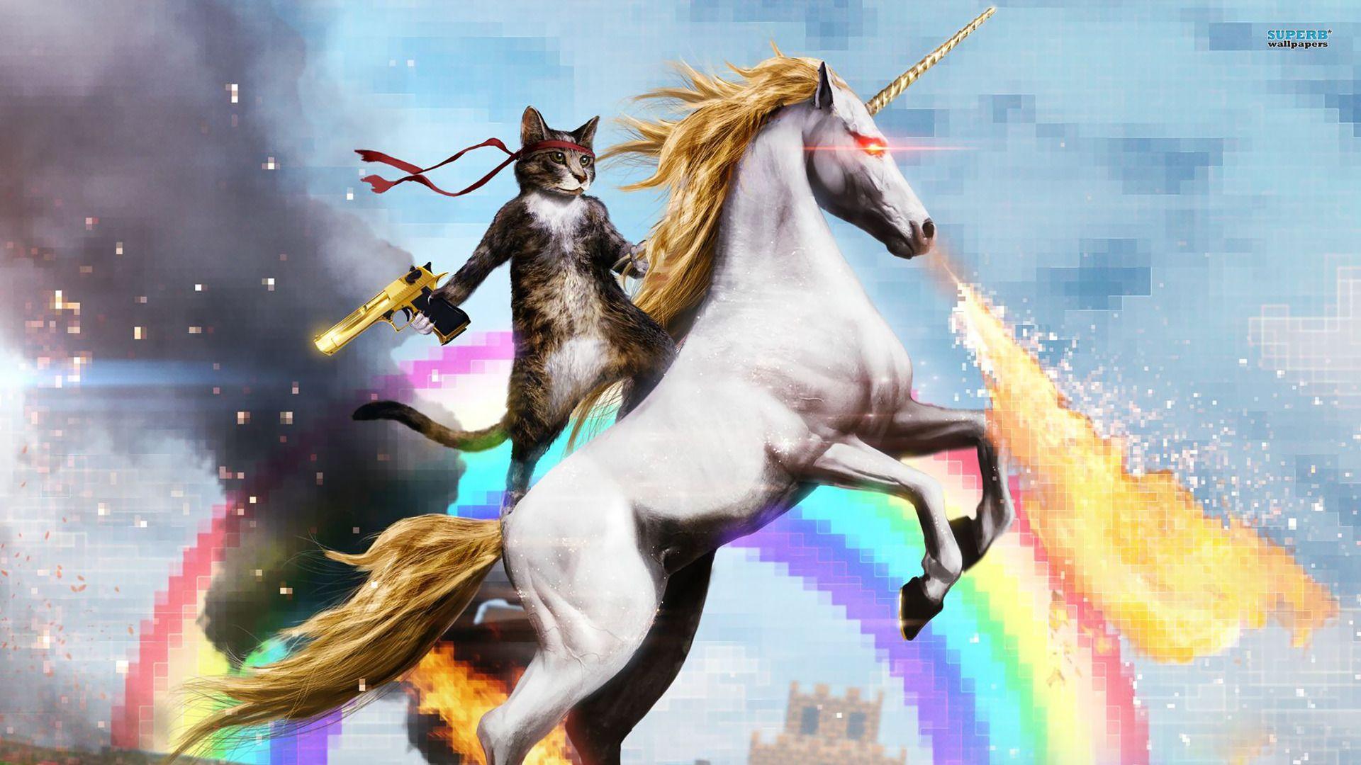 Funny Cat Birthday Meme : Happy birthday thread social imgur community animals and