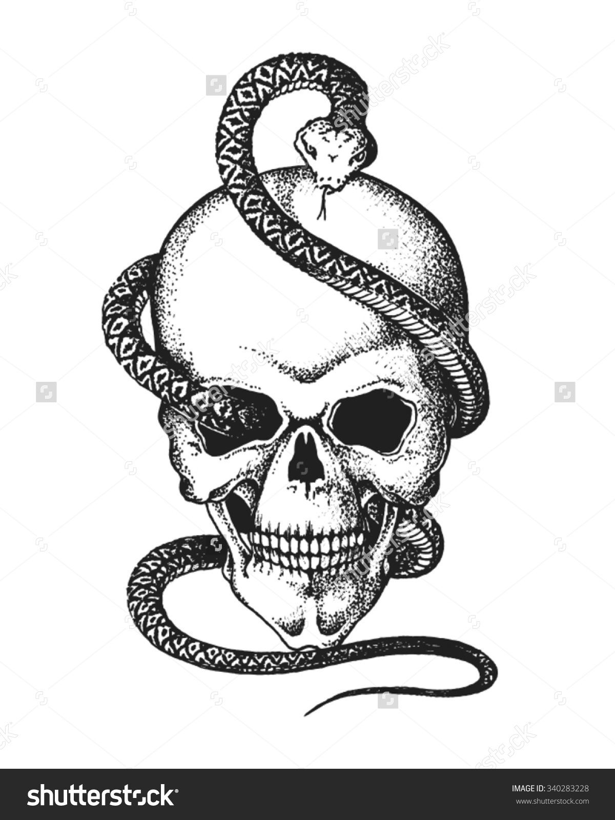Modify and vectorize this as possible red vipers vehicle or hand drawn human skull entwined by snake vector illustration buy this stock vector on shutterstock find other images thecheapjerseys Choice Image