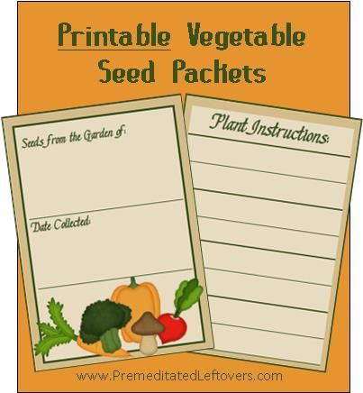 Instructions For How To Collect Seeds From Your Garden Dry And Includes A Free Printable Seed Packet