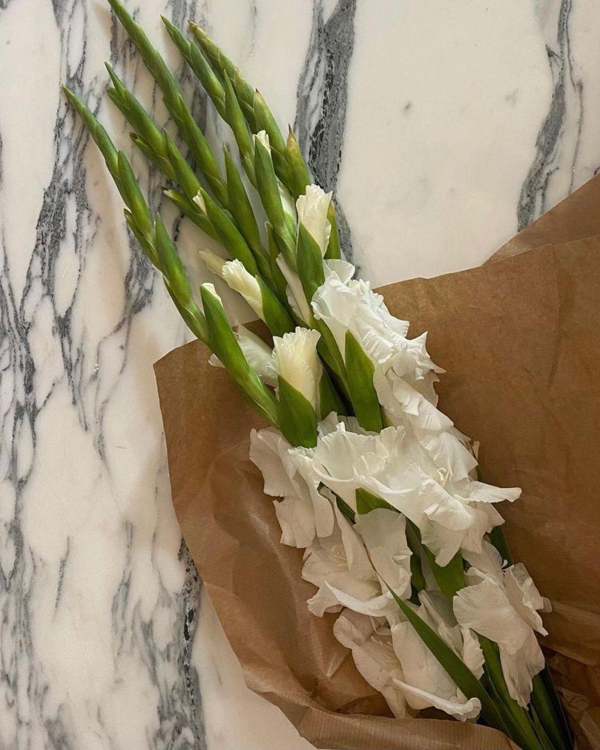 Rikkekrefting In 2020 Gladiolus Flower Garden Bloom