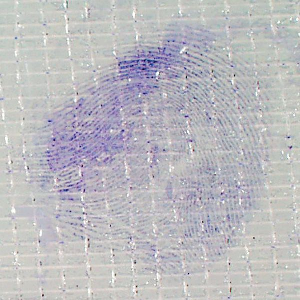Crystal Violet develops prints by soaking them: Mix the powder in water, soak the tape in the solution and rinse with running tap water.Indefinite shelf life