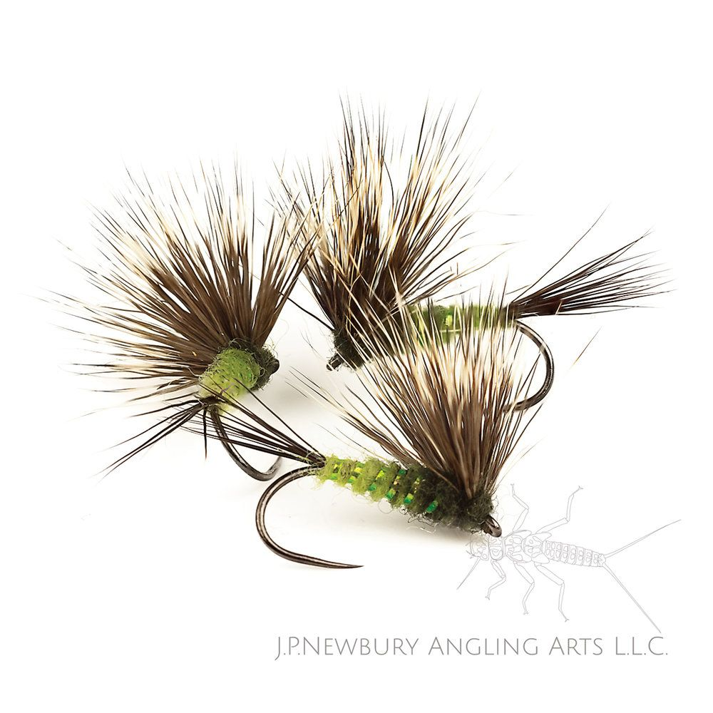 Pin by dave potts on flies | Trout fishing tips, Trout fishing, Fly