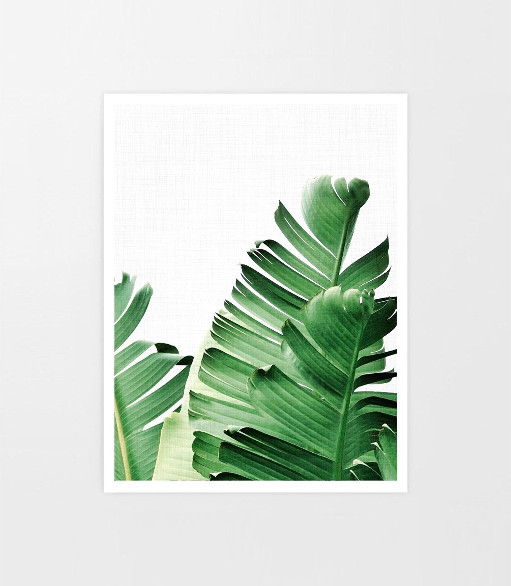 Watercolor Green Plants Monstera Nature Posters And Prints: Banana Leaves Poster, Banana Leaf Print, Tropical Print
