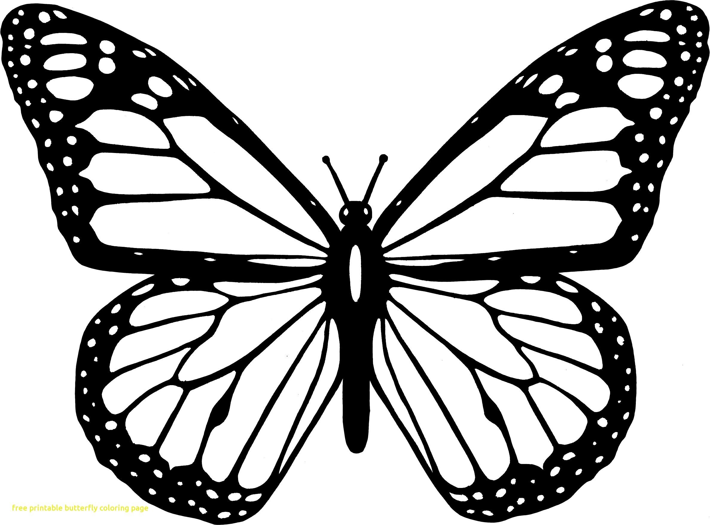 Coloring Page Of butterfly New Easily Colouring Pages