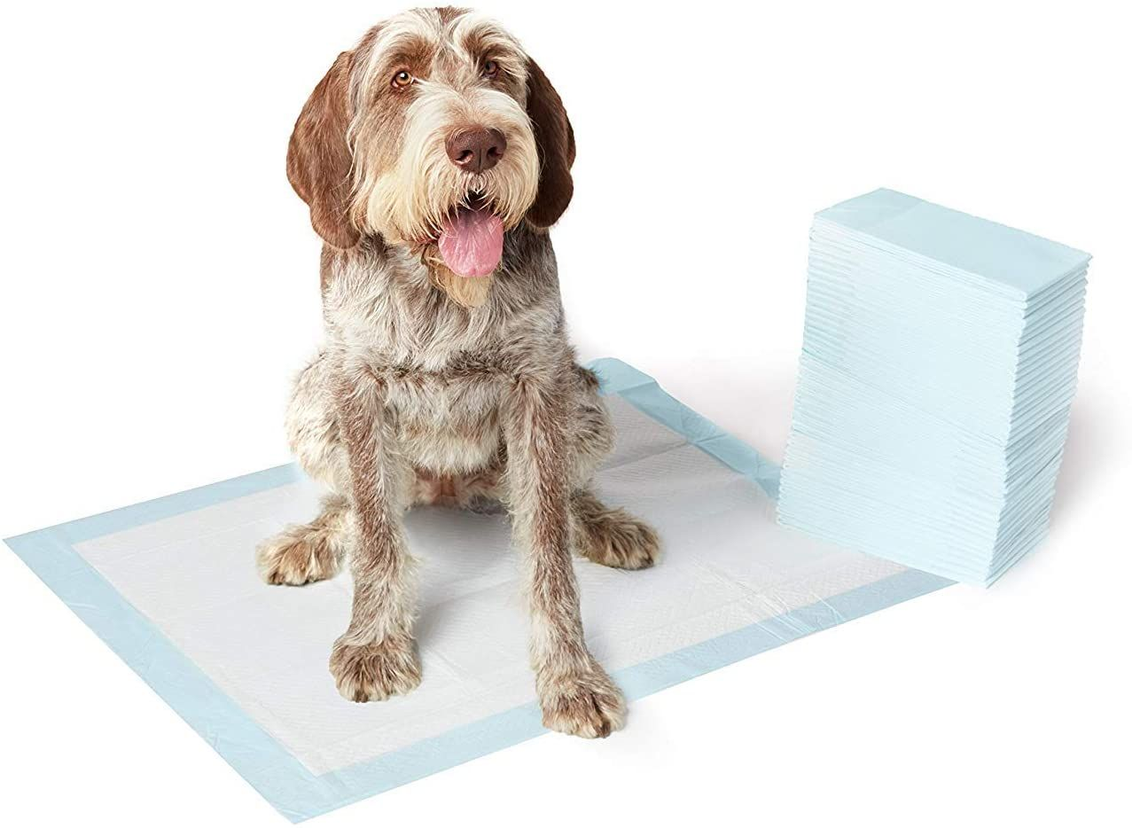 Dog And Puppy Potty Training Pads In 2020 Potty Training Puppy Puppies Dog Pads