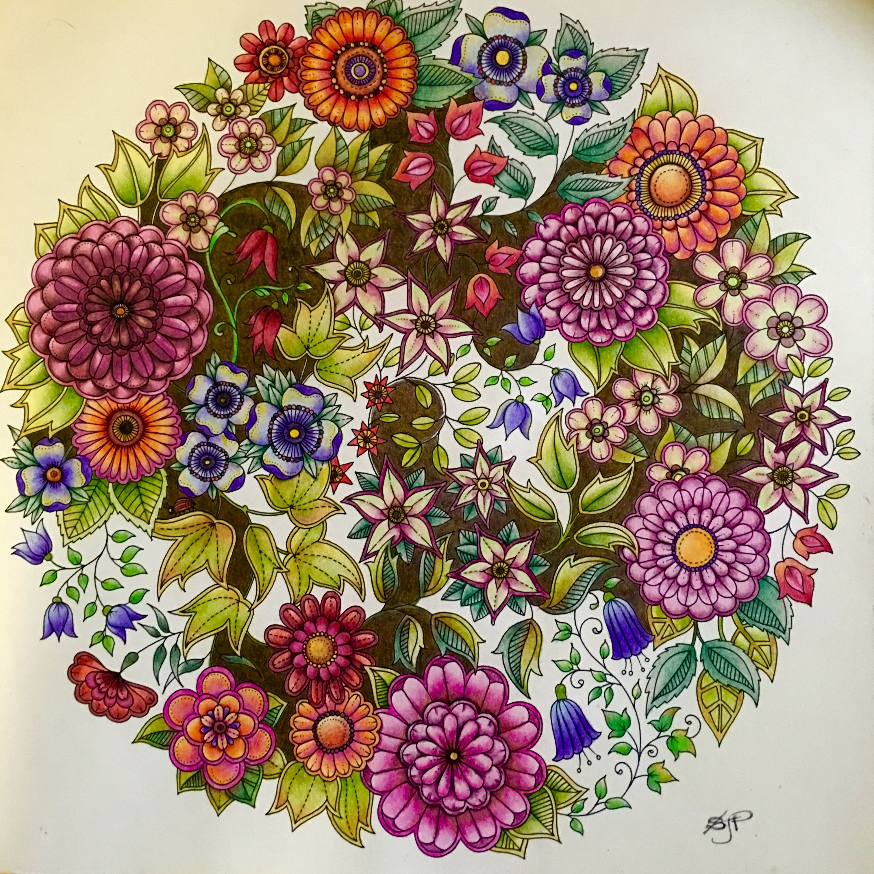 Hooray Finally Finished The 4th Page From Johanna Bas Secret Garden Coloring Book Inspiration Secret Garden Coloring Book Finished Secret Garden Coloring Book