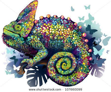 chameleon skin stock photos, chameleon skin stock
