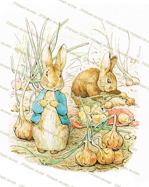Beatrix Potter Easter Bunny Benjamin Peter Rabbit School