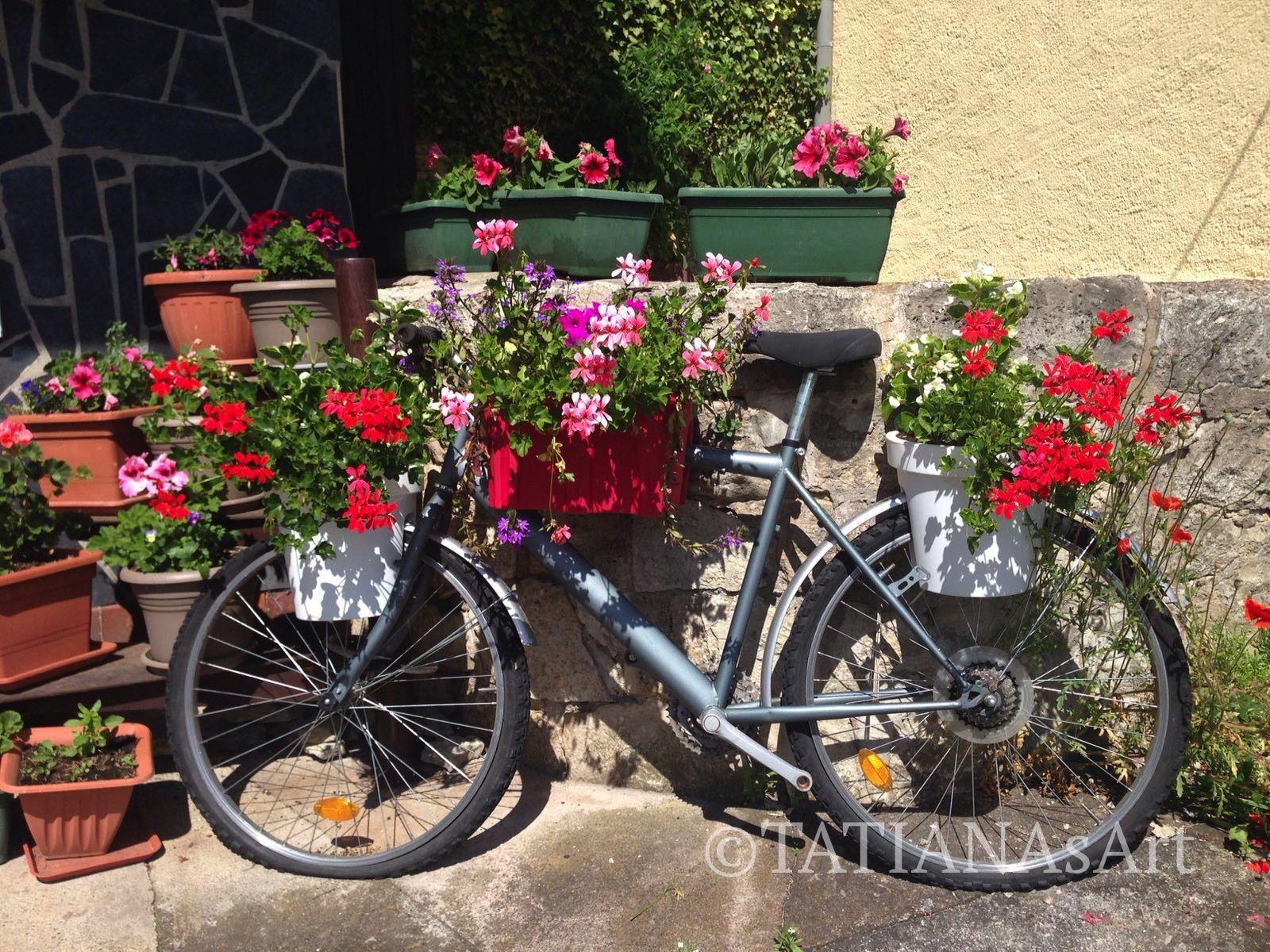 Altes fahrrad im garten tatianasart fahrrad garten dekoration neues leben der alten sachen - Dekoration fahrrad ...