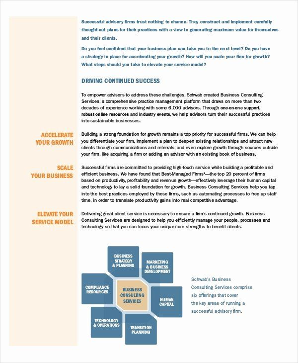 Consulting Proposal Template Doc Inspirational Business Proposal