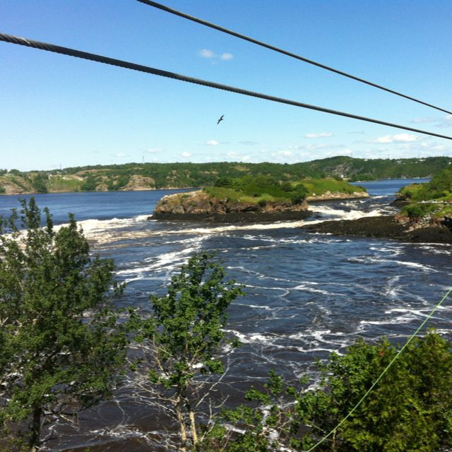 Zip line over the reverse falls in St. John, New Brunswick.