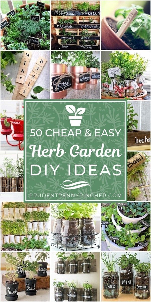 50 Cheap and Easy DIY Herb Garden Ideas is part of Diy herb garden, Herb garden pots, Indoor herb garden, Herb garden design, Outdoor herb garden, Easy garden - Plant a DIY Herb Garden with these cheap & easy ideas  From potted herb gardens to repurposed planter ideas, there are many ways to create a herb garden!