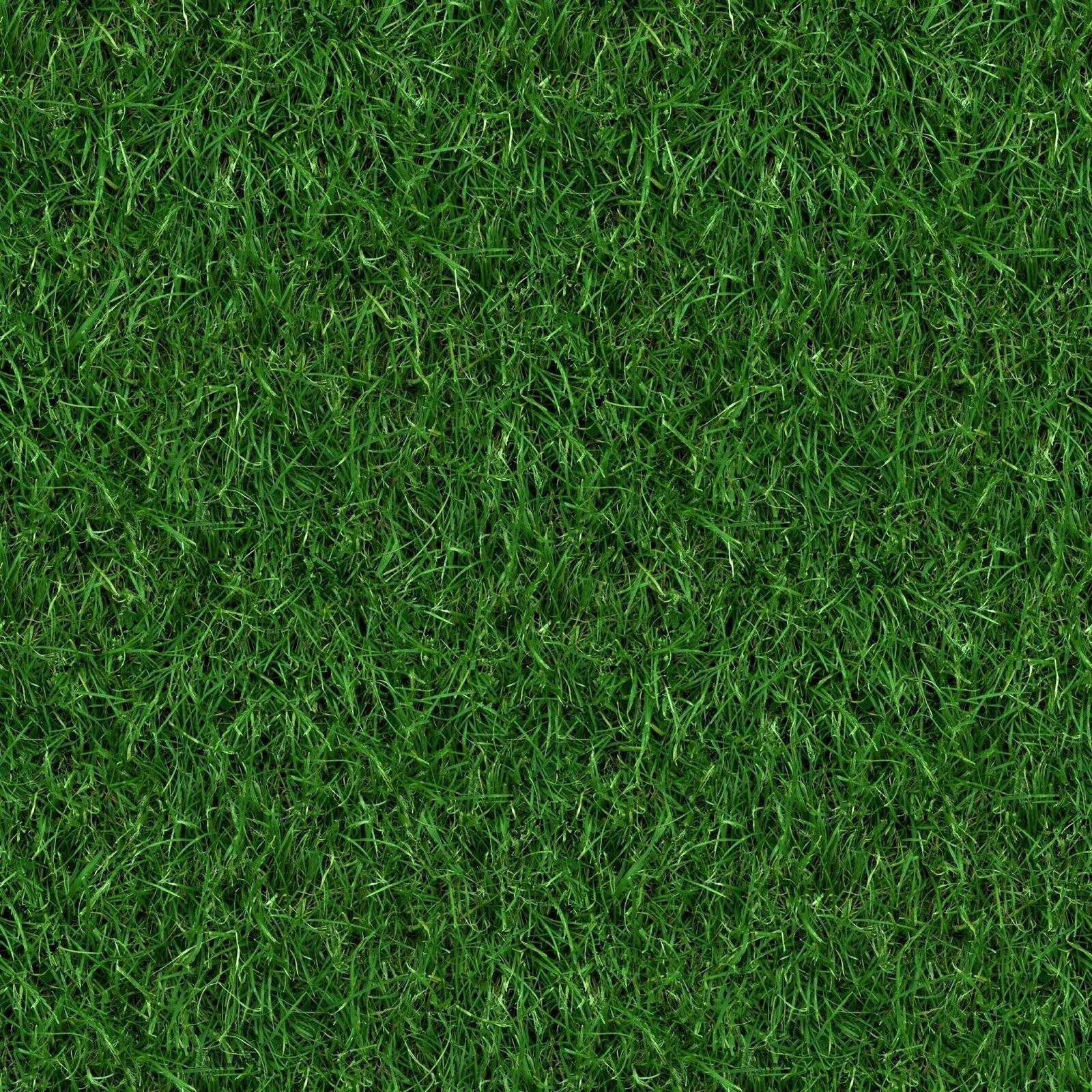 artificial turf texture. (GRASS 4) Seamless Turf Lawn Green Ground Field Texture Artificial S