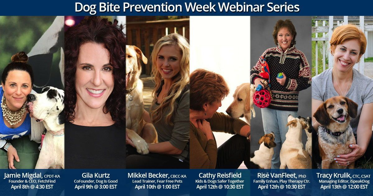 Join Our Free Dog Bite Prevention Webinar Series With Some Of The Leading Names In Dog Bite Prevention Let Dog Bite Prevention Dog Boarding Near Me Dog Biting