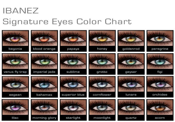 eye color chart with names - Google Search male model Eye color