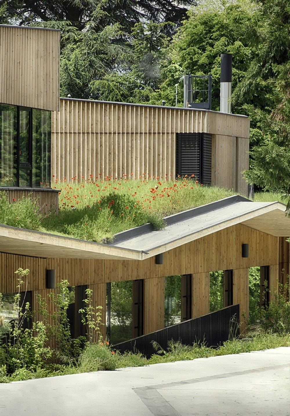 Green roof vertical board and batten siding school complex in rillieux la pape tectonic architects renaud araud