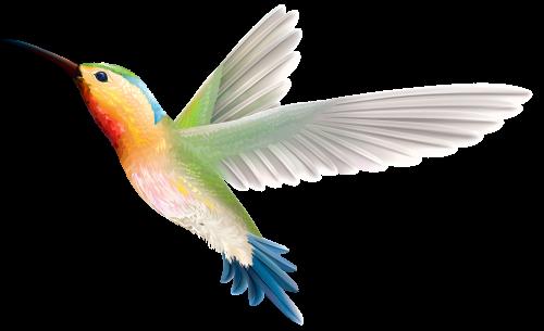 Hummingbird Png Clipart Hummingbird Art Clip Art Vector Graphics Illustrations