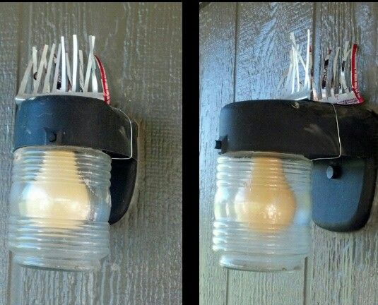 Diy Bird Spike Made From Aluminum Can Used To Keep Birds Nesting On Porch Light