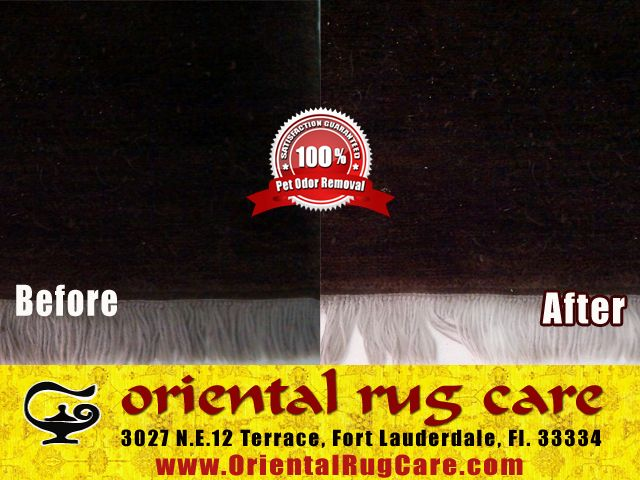 Professional Rug Cleaning Services in Aventura