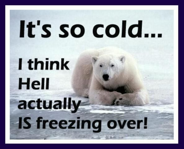 Cold Weather Cold Weather Funny Winter Quotes Funny Quotes