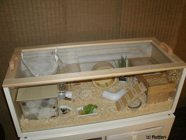 IKEA Billy Roborovski Hamster Cage | Flickr - Photo Sharing!