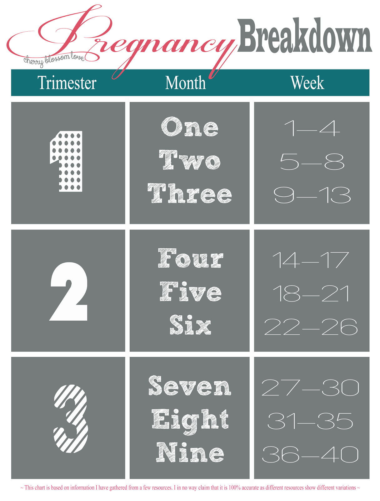 hight resolution of pregnancy breakdown in trimesters months and weeks
