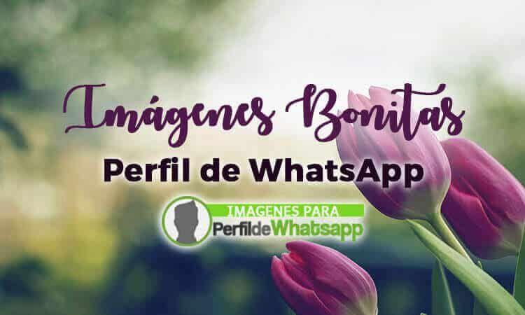 Imágenes Bonitas Para Whatsapp Con Frases Y Sin Frases En