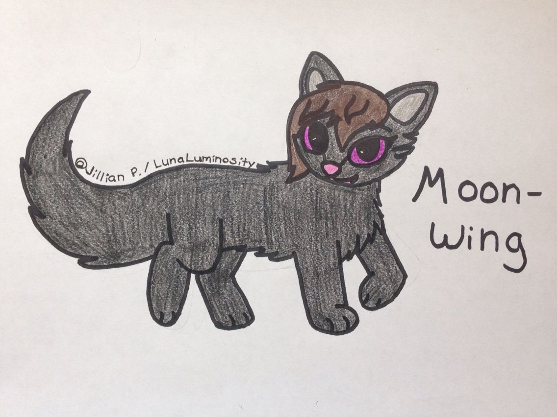 Hi, I'm Moonwing! ) I'm a black shecat with brown fur on