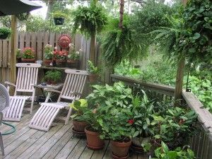 Hanging Plants Can Give Shade As Well As Privacy To A Deck Or