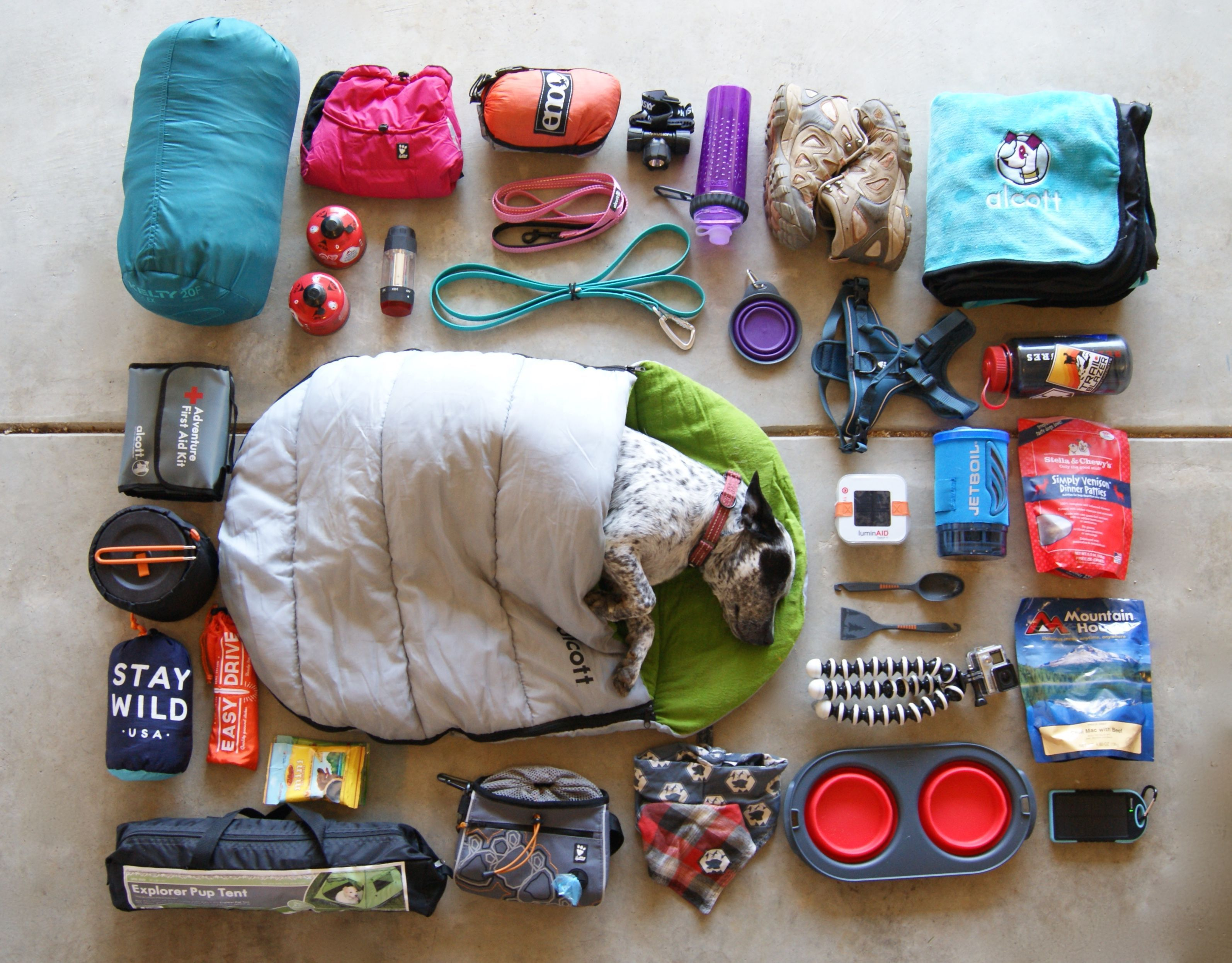 Photo of Some of our favorite camping gear! #flatlay #gearshot #dogcampinggear