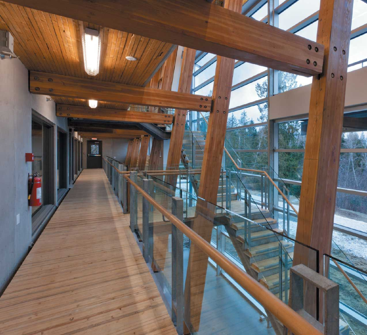 VIU Deep Bay Marine Field Station | McFarland Marceau Architects    The wood structure gives the building its defining material character. Mezzanine walkways give visitors views down to the research floor.