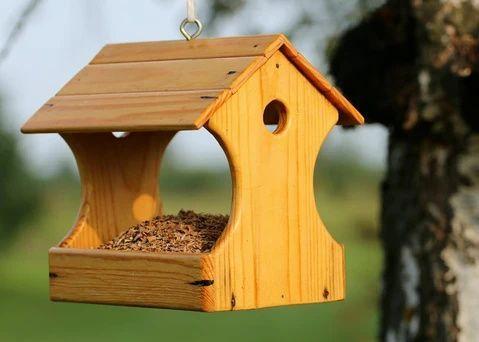 ment nourrir les oiseaux
