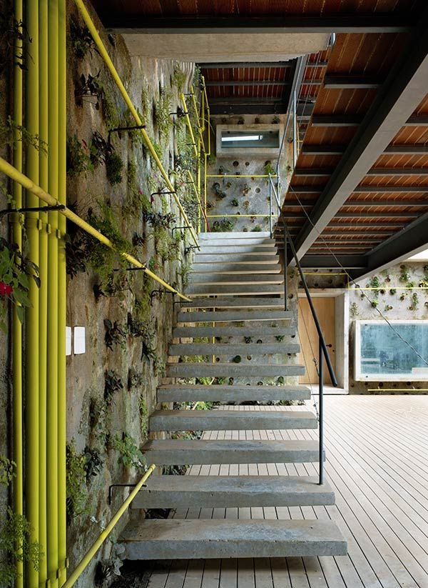 Review> Design With Nature? - The Architect's Newspaper