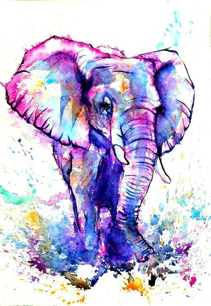 Pin by Ashley Owen on Ink me Elephant art, Watercolor