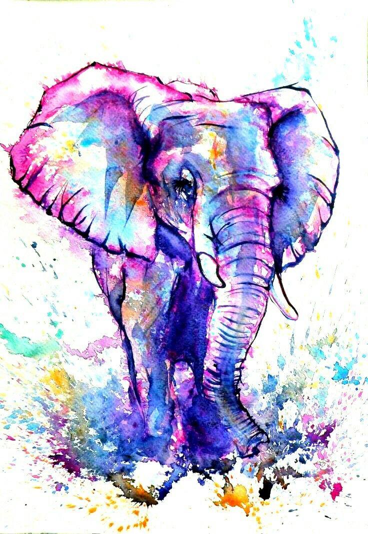Pin by Ashley Owen on Ink me Elephant art, Watercolor