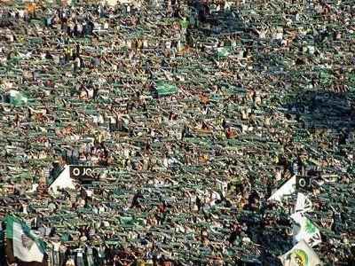 Sporting Clube de Portugal,amor do nosso coração,viemos a curva cantar,queremos que sejas CAMPEÃO. SPORTING LAAA LLAA