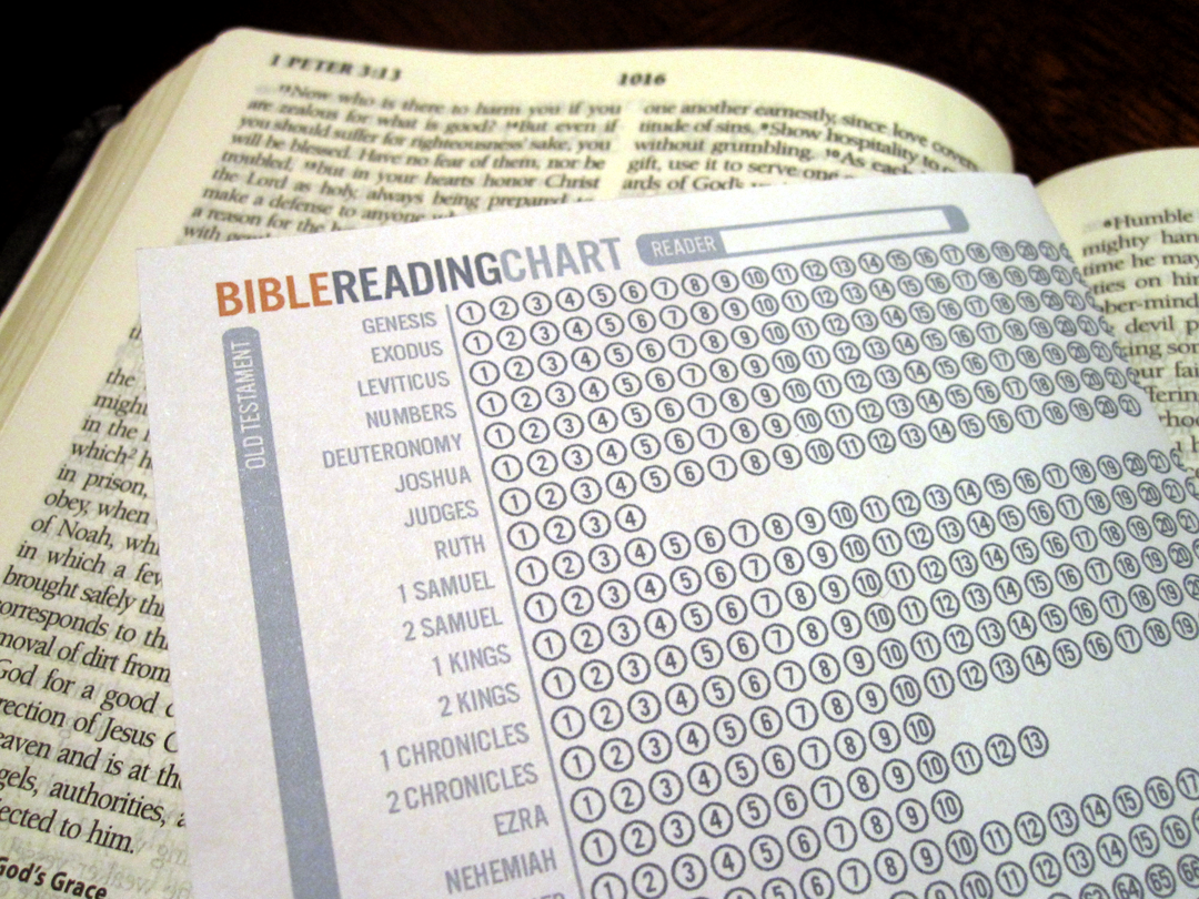 Bible Reading Chart Checklist Of What You Have Read And