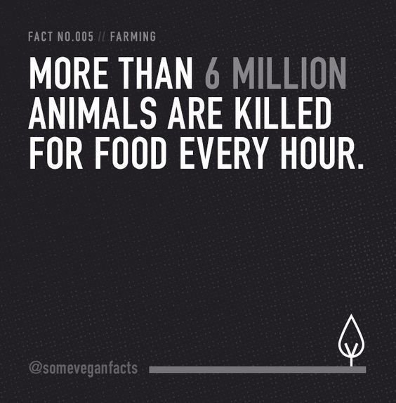 15 Facts That Will Make You Consider Going Vegan #veganquotes