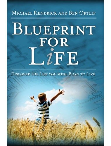 Blueprint for life is a powerful book guides men through the five blueprint for life is a powerful book guides men through the five areas of life malvernweather Image collections