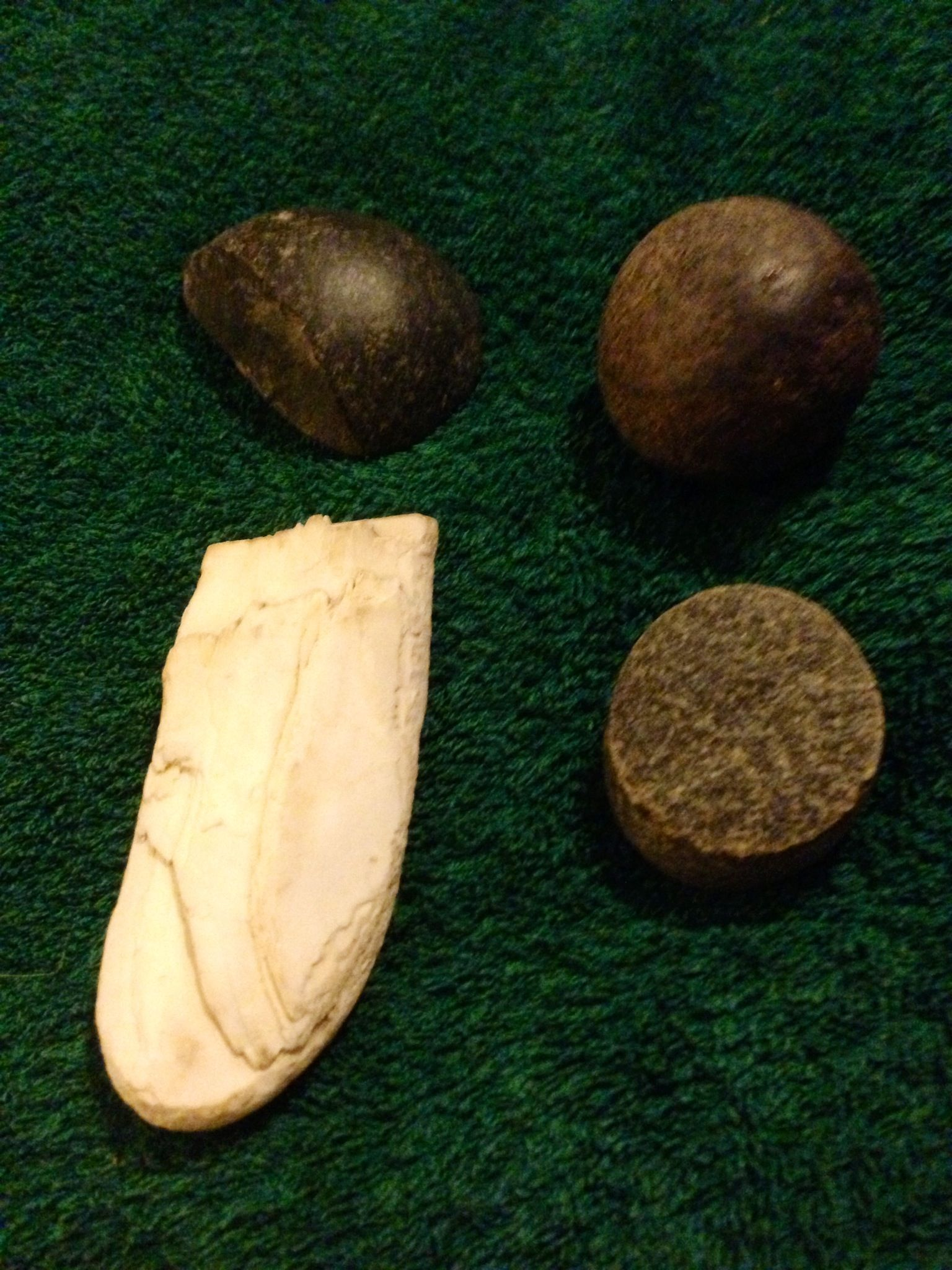 Taino Stone And Shell Tools Taino Indians Indians Historical