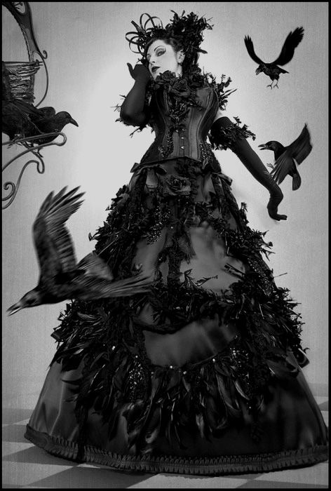 Cinderellas twin sister had help with her dress too - the Ravens and Crows created a vision of loveliness for Rindecella to wear to the ball.