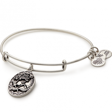 Sister Charm Bangle Alex And Ani